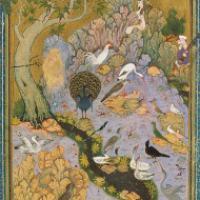 A conferência dos pássaros*